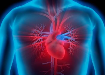 Cardiovascular Management of Adults with Marfan Syndrome