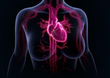 Women with Stable Angina Pectoris and No Obstructive Coronary Artery Disease: Closer to a Diagnosis