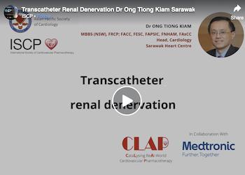 Transcatheter Renal Denervation