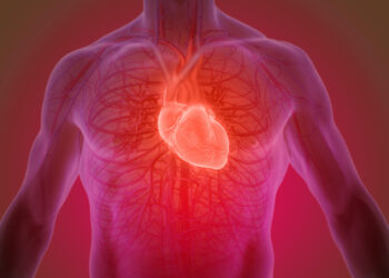 Testosterone and the Heart